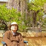 nobara_fuji6_HP