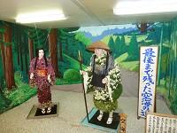 kiku07_nobara