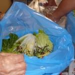 白菜つける
